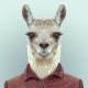 http://pliki.jaskiniabehemota.net/avatars/users/61