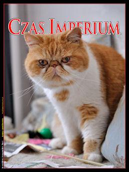 http://pliki.jaskiniabehemota.net/czas/covers/CI44-cover.jpg