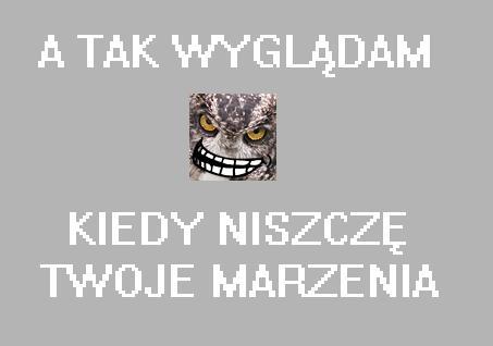 http://pliki.jaskiniabehemota.net/users/laysander/huhuh.jpg