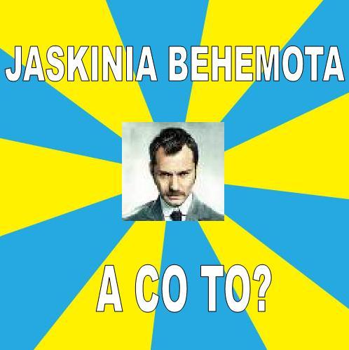 http://pliki.jaskiniabehemota.net/users/mateusz/Field1.JPG